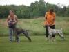 training-day-and-meineke-farm-023