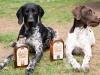 Bird-Dog-Whisky